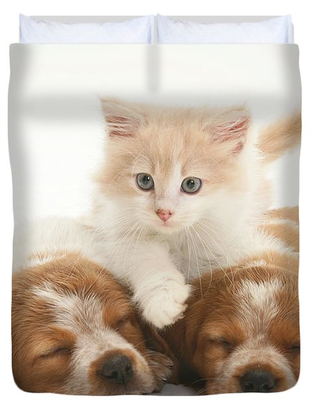 Kitten And Puppies Duvet Cover by Jane Burton