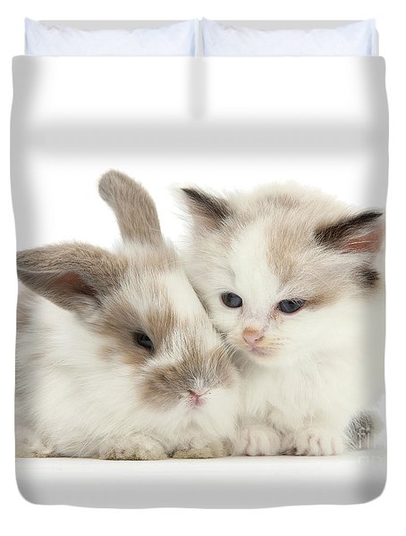 Kitten Cute Duvet Cover