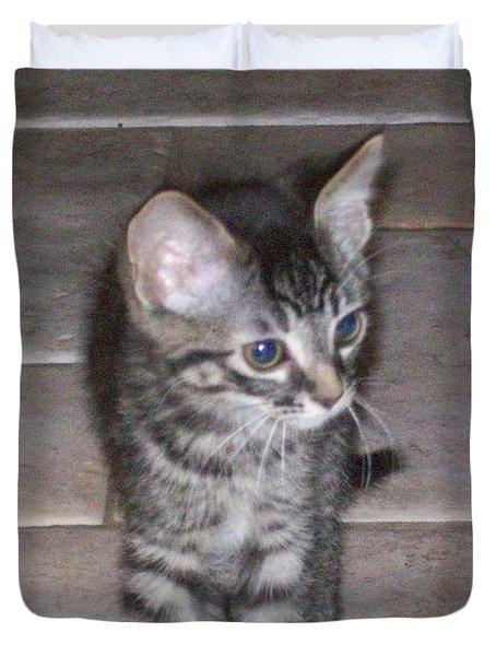 Martius Kitten Duvet Cover