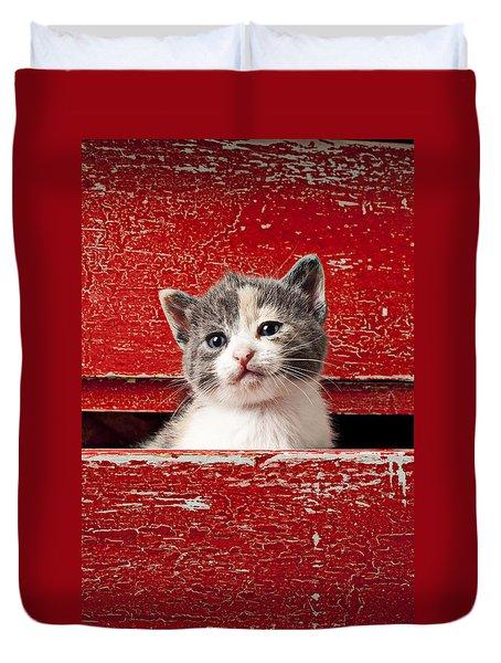 Kitten In Red Drawer Duvet Cover