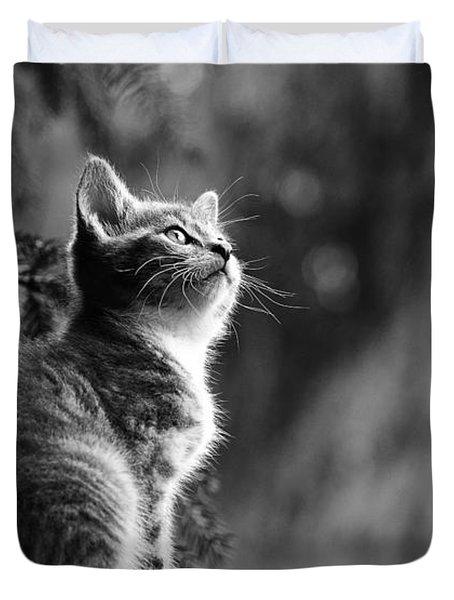 Kitten In The Tree Duvet Cover