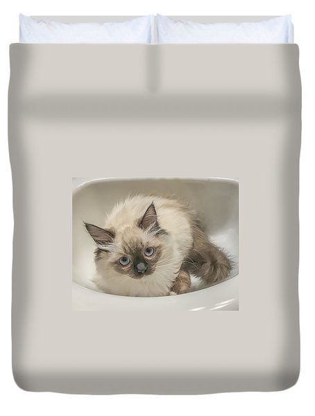 Kitty Blue Eyes Duvet Cover