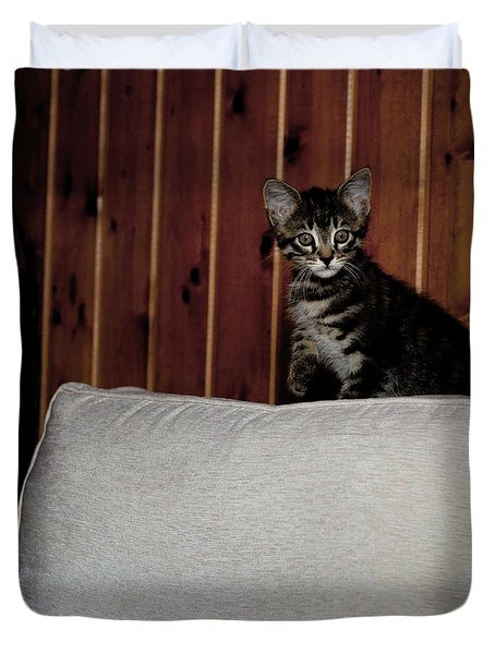 Duvet Cover featuring the photograph Kitty by Laura Melis