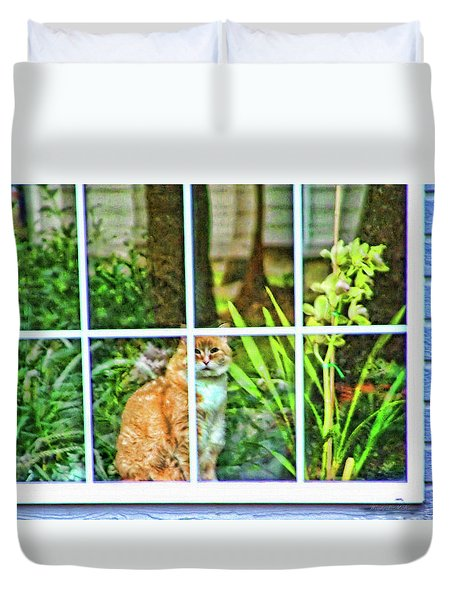 Duvet Cover featuring the photograph Kitty Reflections by Wendy McKennon
