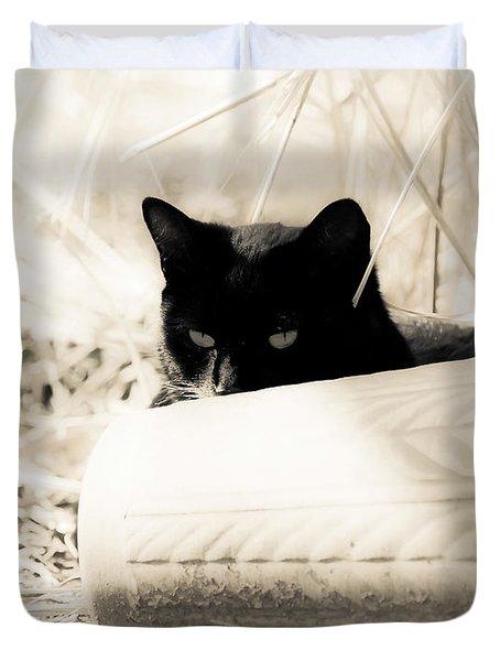 Kitty Stalks In Sepia Duvet Cover