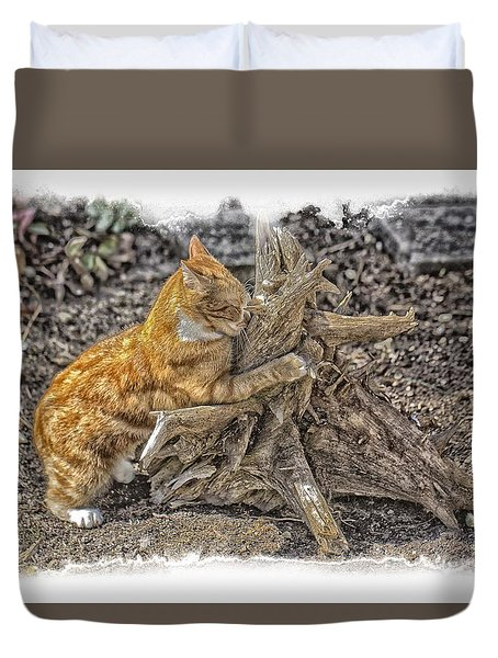 Kitty Thinking Of Mischievous Things Duvet Cover by Constantine Gregory