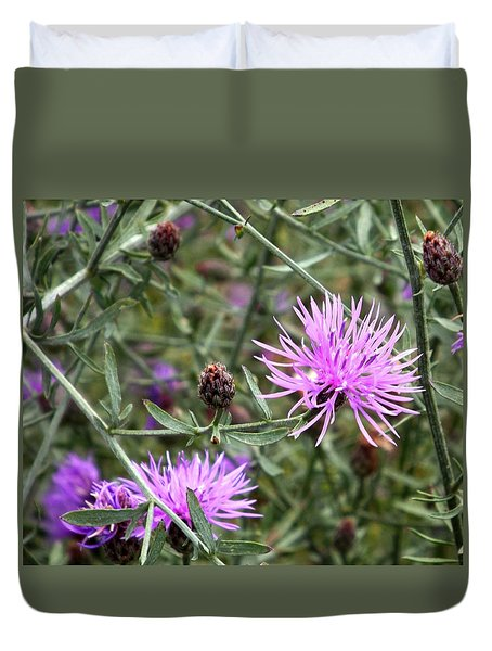 Duvet Cover featuring the photograph Knapweed by Danielle R T Haney