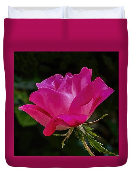 Duvet Cover featuring the photograph Knock-out Rose by Susi Stroud