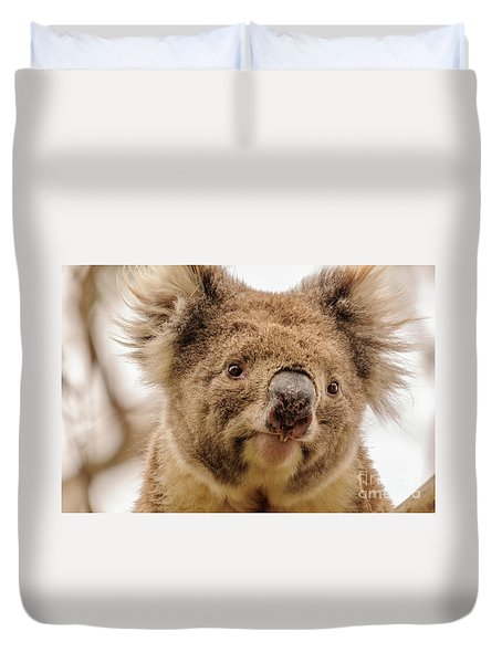 Koala 4 Duvet Cover