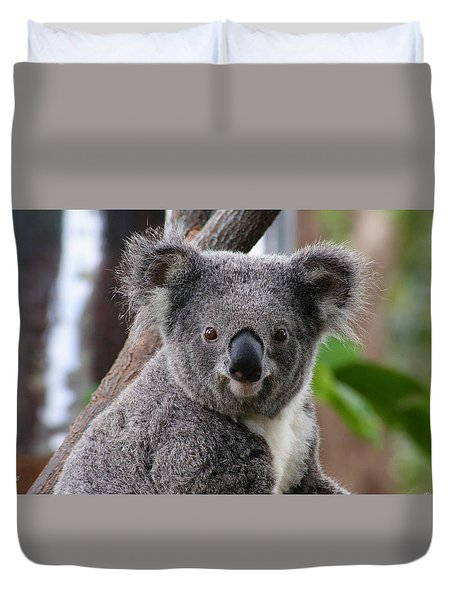 Koala Bear 7 Duvet Cover