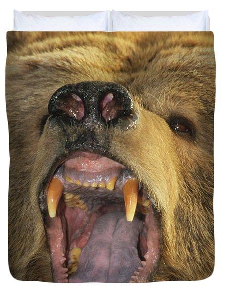 Kodiak Bear Ursus Arctos Middendorffi Duvet Cover by Matthias Breiter
