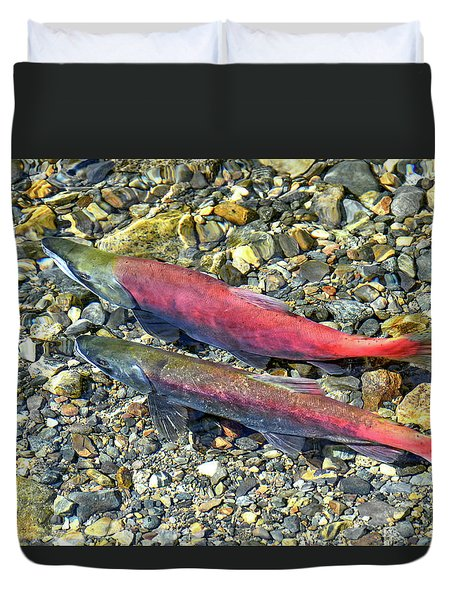 Duvet Cover featuring the photograph Kokanee Salmon At Taylor Creek by David Lawson