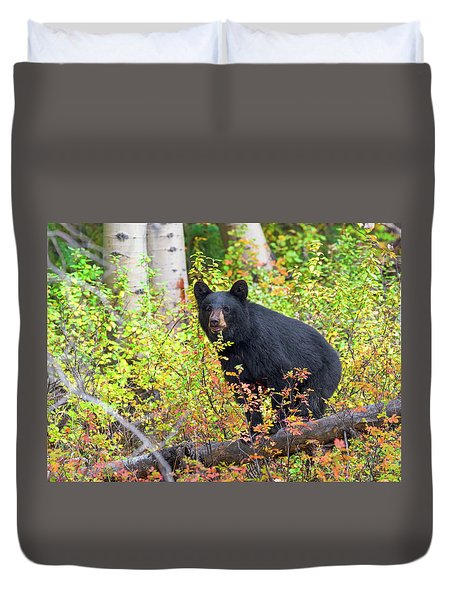 Fall Bear Duvet Cover