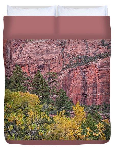 Kolob Canyon Colors Duvet Cover