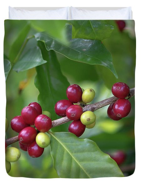 Kona Coffee Cherries Duvet Cover