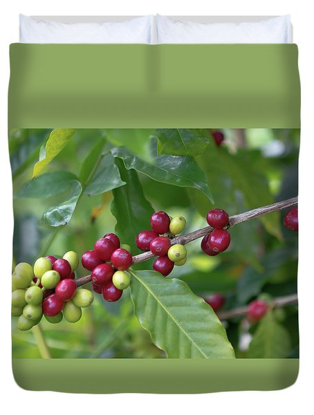 Kona Coffee Cherries Duvet Cover