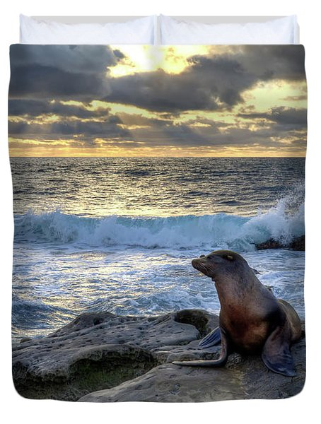 La Jolla Sea Lion Duvet Cover