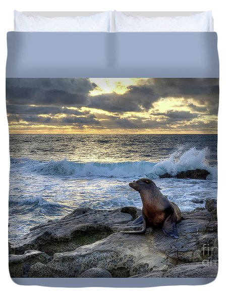 La Jolla Sea Lion Duvet Cover by Eddie Yerkish