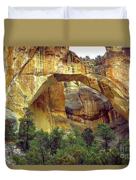 La Ventana Natural Arch Duvet Cover
