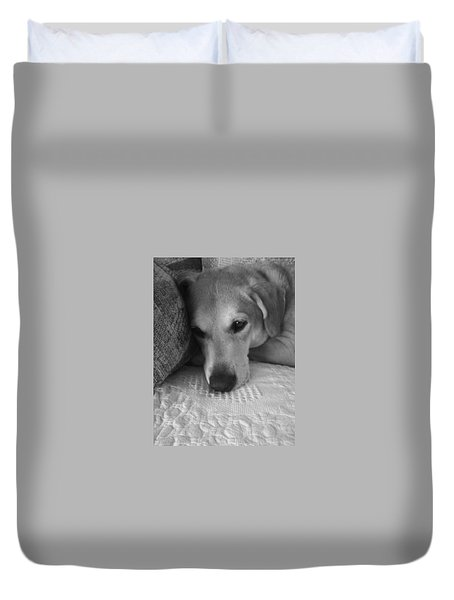 Lab On A Couch Duvet Cover