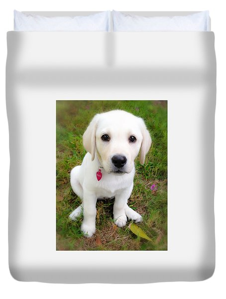 Duvet Cover featuring the photograph Lab Puppy by Stephen Anderson