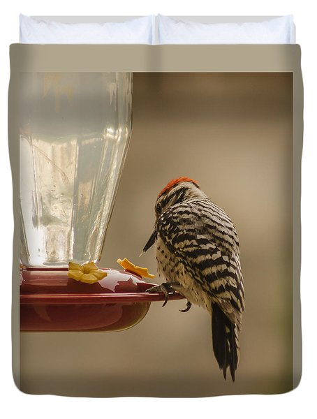 Ladderback Woodpecker 2 Duvet Cover