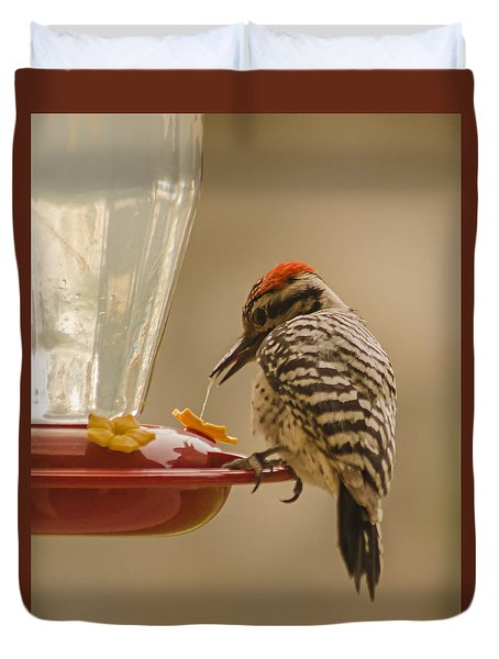 Ladderback Woodpecker 3 Duvet Cover
