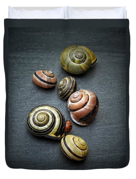 Lady Bug And Snail Shells 1 Duvet Cover
