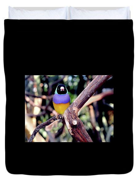 Lady Gouldian Finch Duvet Cover