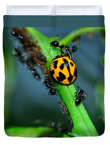 Ladybird And The Ants 2 By Kaye Menner Duvet Cover by Kaye Menner