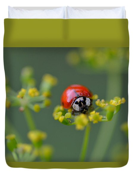 Ladybug In Red Duvet Cover