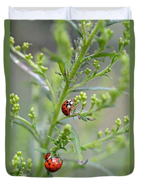 Duvet Cover featuring the photograph Ladybug Ladybug... by Lila Fisher-Wenzel