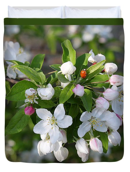 Ladybug On Cherry Blossoms Duvet Cover