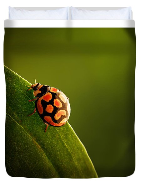 Ladybug  On Green Leaf Duvet Cover by Johan Swanepoel