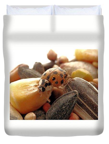 Ladybug On The Run Duvet Cover by Belinda Lee