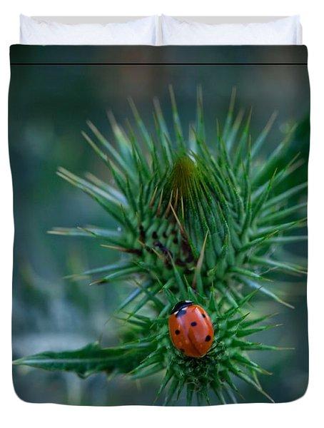 Ladybug On Thistle Duvet Cover
