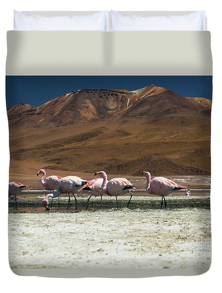 Duvet Cover featuring the photograph Laguna Colorada, Andes, Bolivia by Gabor Pozsgai