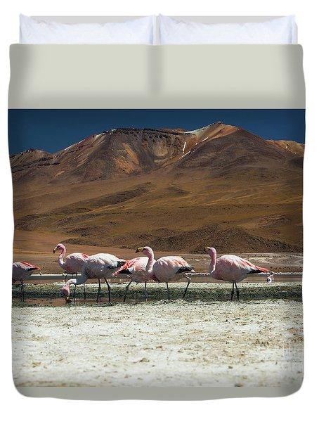 Laguna Colorada, Andes, Bolivia Duvet Cover