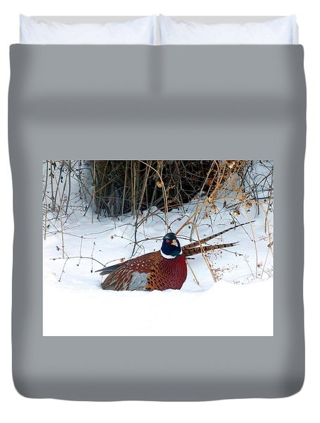 Lake Country Pheasant 2 Duvet Cover by Will Borden