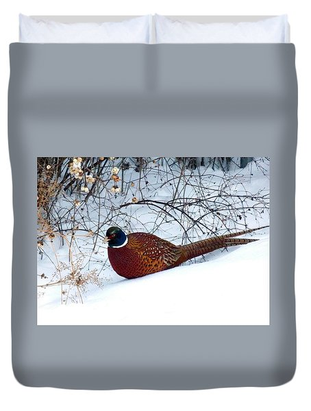 Lake Country Pheasant Duvet Cover by Will Borden