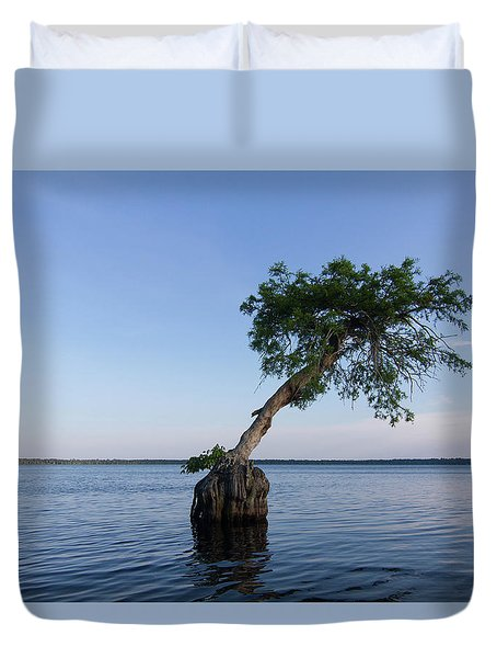 Lake Disston Cypress #1 Duvet Cover