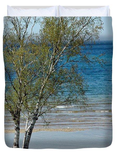 Duvet Cover featuring the photograph Lake Michigan Birch Tree Bench by LeeAnn McLaneGoetz McLaneGoetzStudioLLCcom