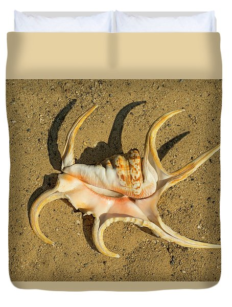 Duvet Cover featuring the photograph Lambis Arthritica Spider Conch by Frank Wilson