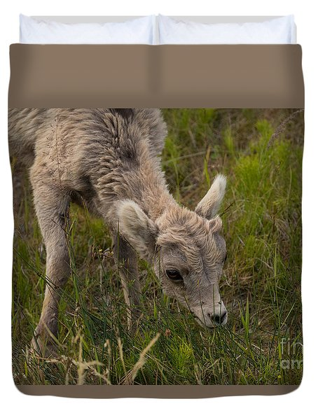 Little Lamb's Lunchtime Duvet Cover