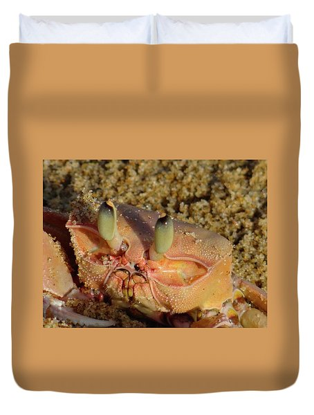 Lamu Island - Crab - Close Up 1 Duvet Cover