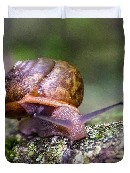 Land Snail II Duvet Cover
