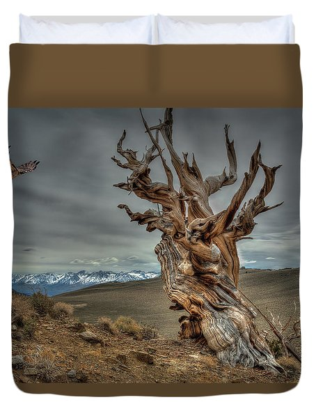 Landing On Bristlecone Pine Duvet Cover