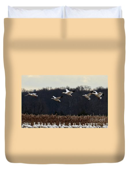 Landing Duvet Cover by Tamera James