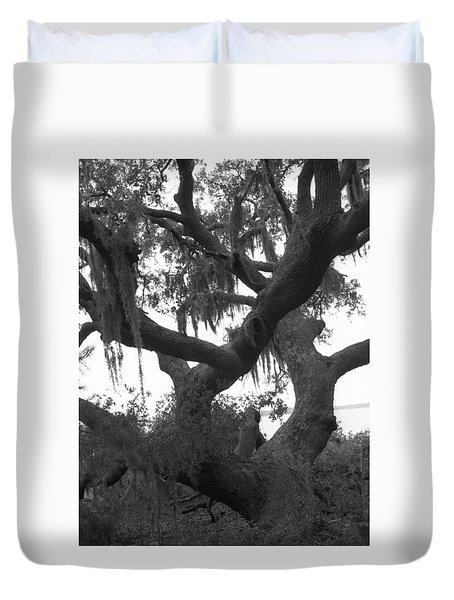 Lands End Talking Tree Duvet Cover