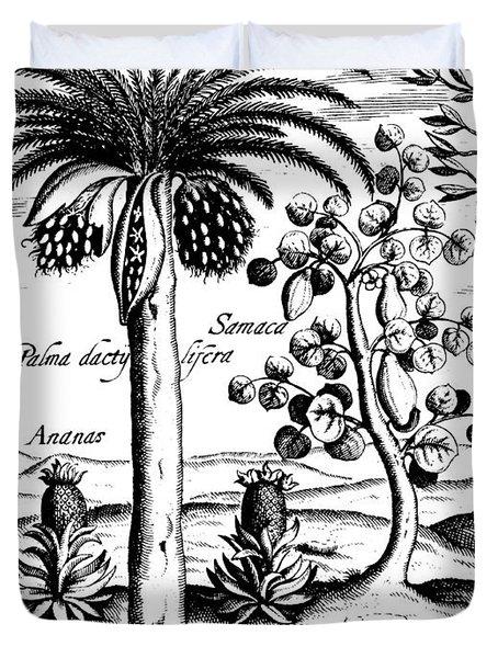 Landscape, Illustration From India Orientalis, 1598  Duvet Cover